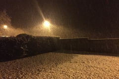 neige_2018-11-19_03