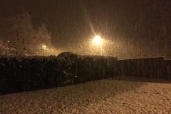 neige_2018-11-19_05