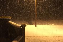 neige_2018-11-19_08