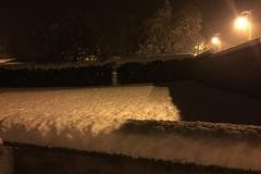 neige_2018-11-19_11