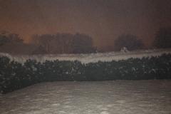 neige_2018-11-19_17
